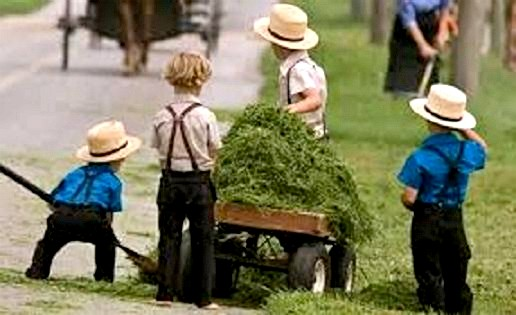 amish-children